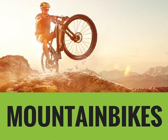 Mountainbike Pedelec Startseite