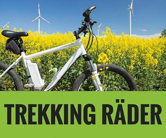 Trekking Rad Pedelec Startseite