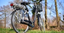 E-Bike auf der Wiese